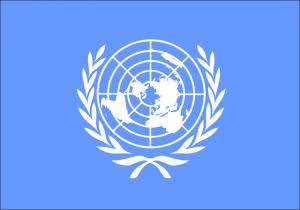Vlag als woondecoratie