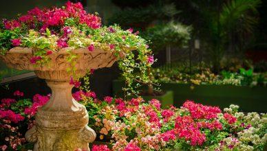 Luxe tuininrichting